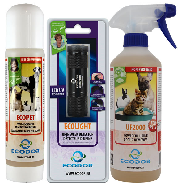 Eliminare l 39 odore d 39 urina del gatto novit - Eliminare odore pipi cane giardino ...